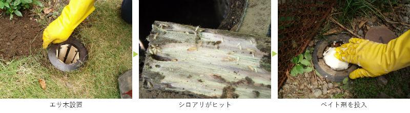 餌木を入れるベイト工法