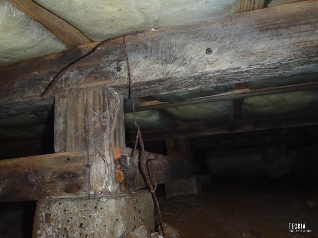 床下の腐朽