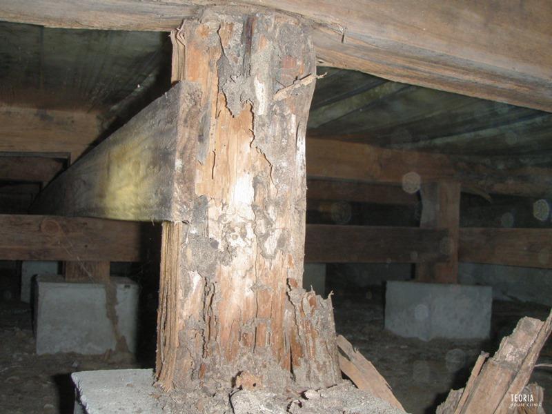 束柱のシロアリ被害
