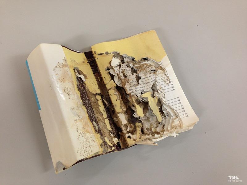 書籍のシロアリ被害