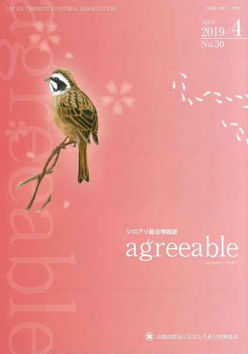agreeable50号